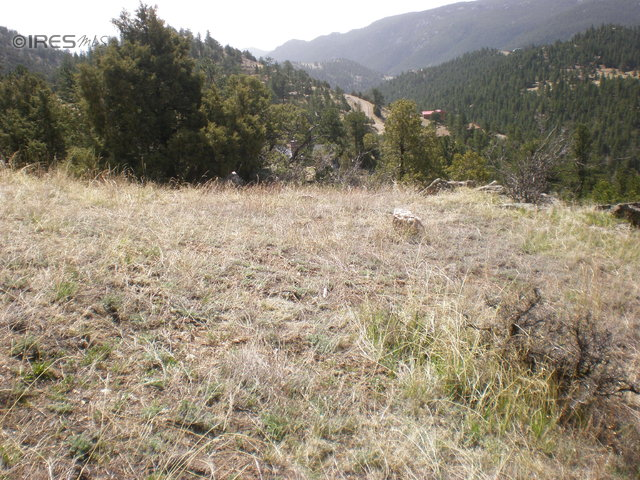 Property for sale by Wayne Newsom